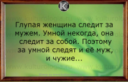 1630558516253.png